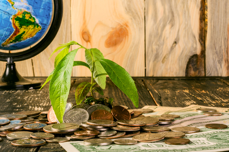 Sprout  rises from a pile of American coins and banknotes up. And the globe from the side. The concept of growth of american  money in investment and business on the globe.. Financial metaphor. On a dark wooden background. Stock Photo