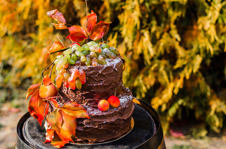 chocolate cakes: beautiful designer chocolate cake decorated with grapes and orange leaves standing on a wooden wine barrel.