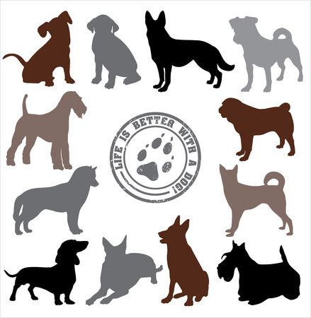 Dogs set design. Vector illustration. 向量圖像