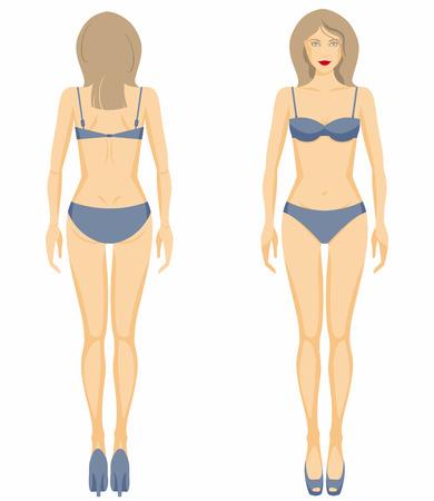 corps femme nue: Vector illustration de la figure de la femme. Dummy.
