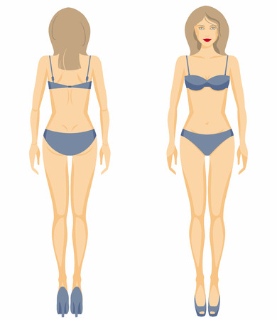 naked female body: Vector illustration of womans figure. Dummy.
