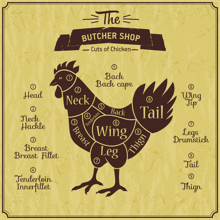 Butcher shop illustration of chicken.
