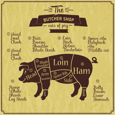 Butcher shop illustration of pork.