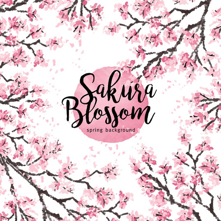 Sakura japan cherry branch with blooming flowers vector illustration. Hand drawn style.