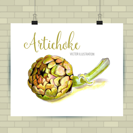 Beautiful vector hand drawn vegetables Illustration. Artichoke image, sketch element for labels, packaging and cards design.