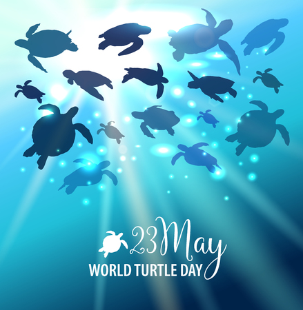 World Turtle Day 23 May background. Turtle swims in the ocean against the background of the sun. Vector illustration