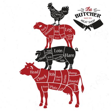 Vlees snijdt. Diagrammen voor slagerij. Dierlijke silhouet. Vector illustratie.
