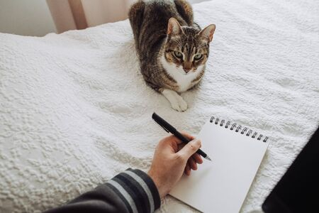 Hand of a left-handed person making a drawing or writing in a notebook with a cat nearby, lying in bed. Top view. Designer freelancer or work from home concept