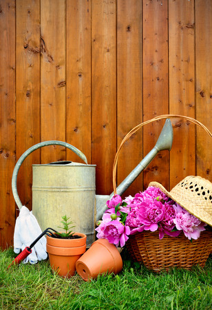 gardening gloves: Gardening tools and objects on old wooden background