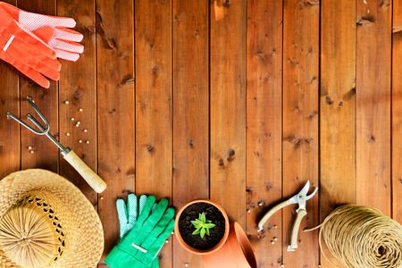 gardening gloves: Copyspace frame with gardening tools and objects on old wooden background