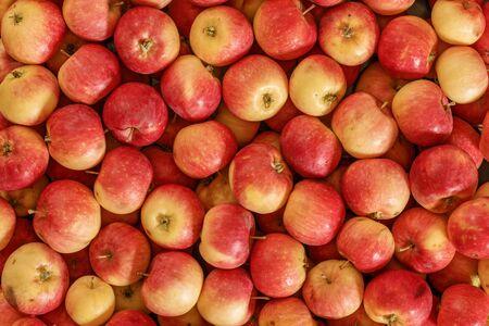 Molte mele rosse. Condizione naturale. Vista dall'alto.