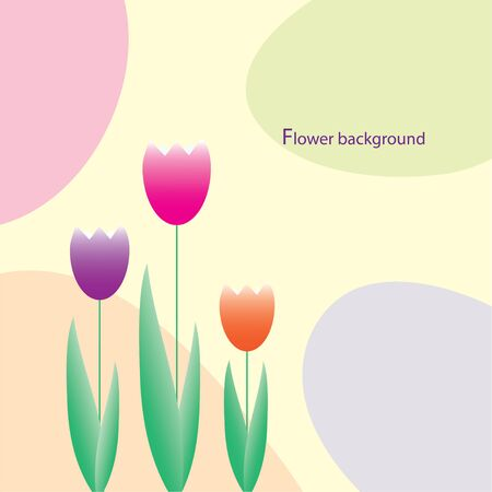 Color tulips  Vector illustration Vector