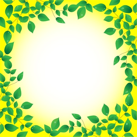 fresh green leaves and sun shine,  frame, vector Vector