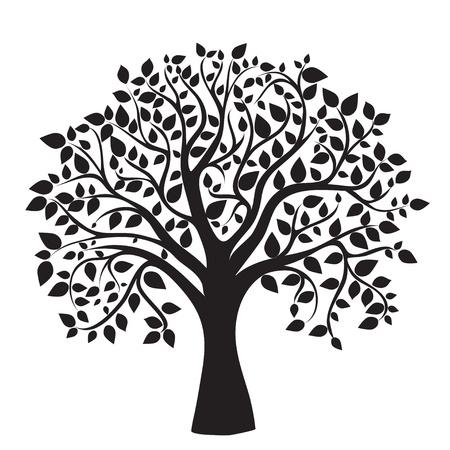 albero della vita: silhouette albero nero isolato su sfondo bianco, vettore