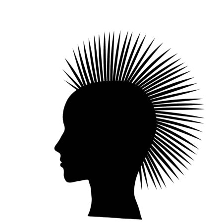 stylized punk hairstyle  Vector