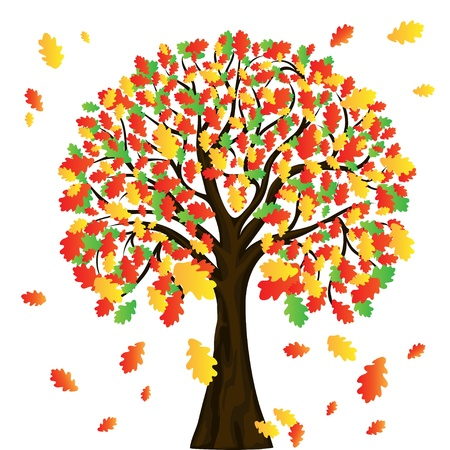 rowan: autumn tree for your design Illustration