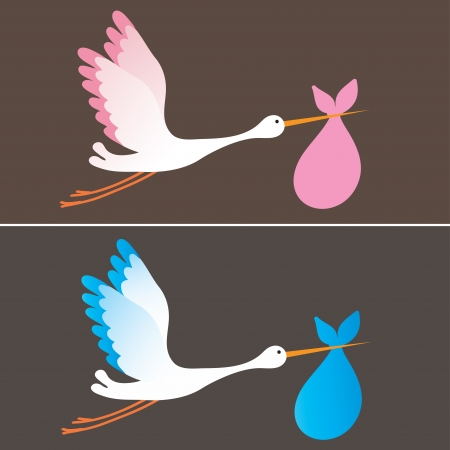 A cartoon illustration of a stork delivering a newborn baby girl and boy Vector