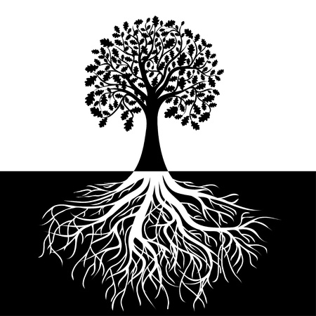 racines: Arbre aux racines sur fond noir et blanc