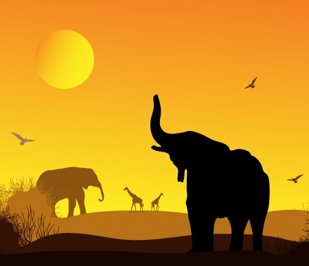 giraffe silhouette: elephant in the background of the African landscape,  Illustration