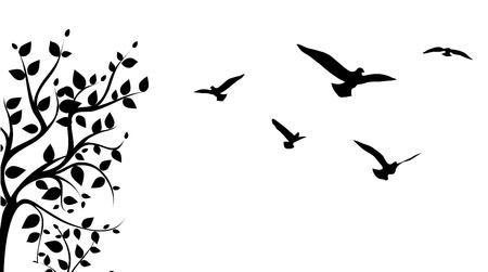 vida natural: pájaro que vuela en torno a una rama de un árbol,