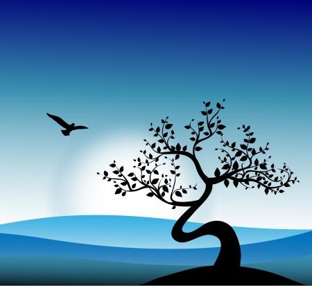 een boom op een achtergrond van blauwe lucht en de zonsopgang,