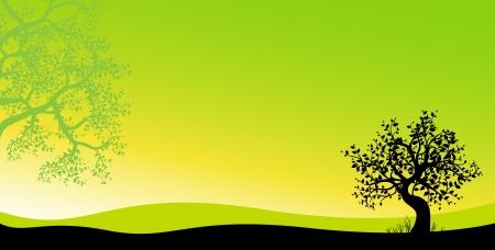 the sun peeps through the trees Stock Illustratie