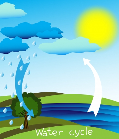 Simple and clear diagram of the water cycle,  Vector