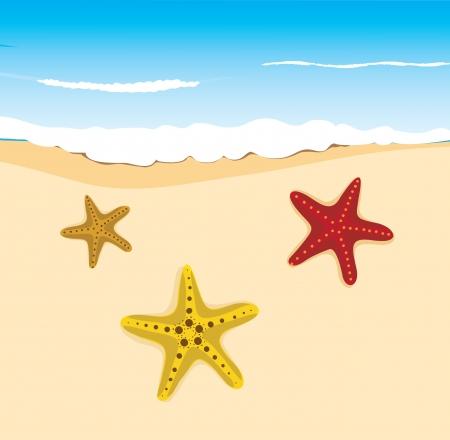 background beach for design Stock Vector - 14410605