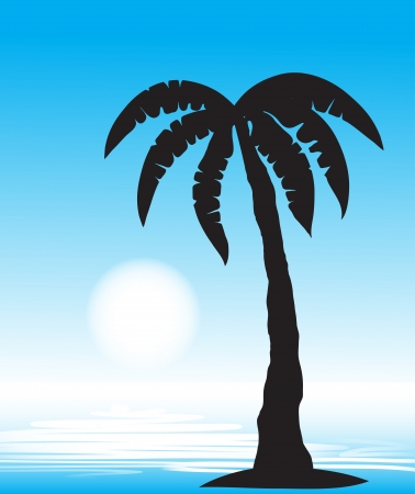 Tropical beach with palm tree  vector,  Vector