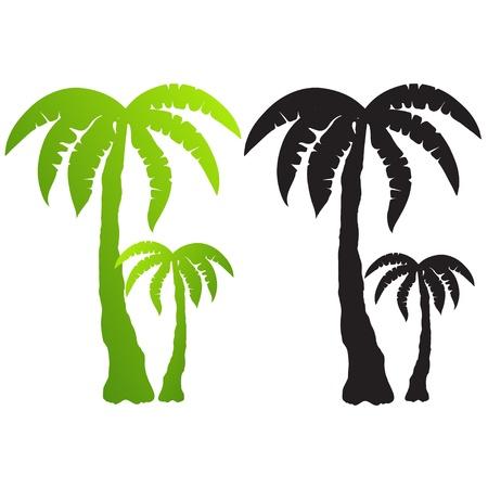 arboles blanco y negro: un conjunto de siluetas de �rboles de palma