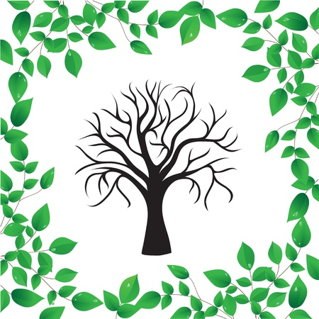 Tree isolated on a white background Vector
