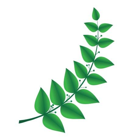 grecian: laurel branch, symbol of victory