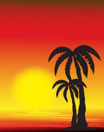 palm tree silhouette at sunset Vector