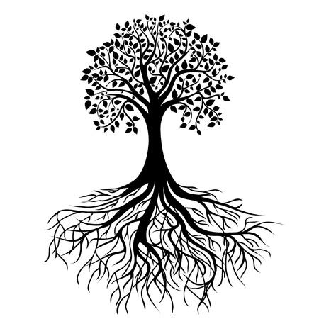 bomen zwart wit: hele zwarte boom met wortels geïsoleerde witte achtergrond vector