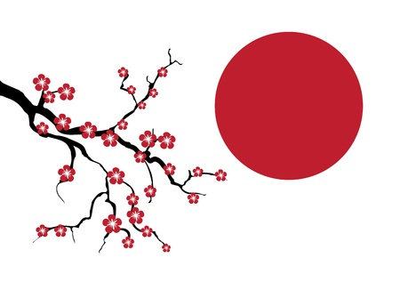 Blossoming cherry tree branch against a red sun