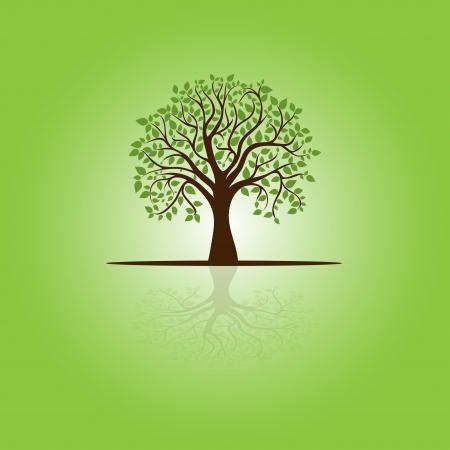 kaart met gestileerde boom en tekst, voor het ontwerp