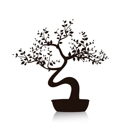 evergreen branch: Vector árbol bonsai en una maceta en blanco y negro Vectores