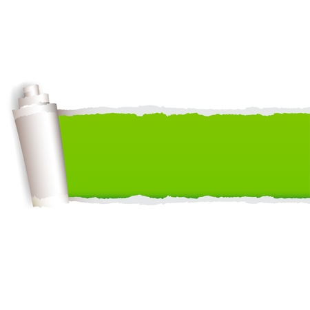ripped paper: Vector torn Paper with space for text with green background