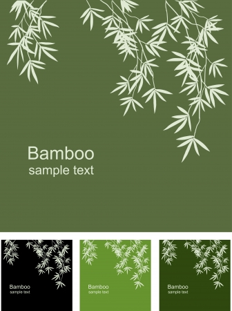 Bamboo floral background, vector image space for information