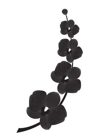 silhouette fleur: Silhouette branche d'orchidée, illustration de vecteur pour la conception