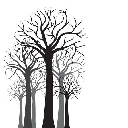 Silhouettes of trees on a white background, vector background Stock Vector - 15128956