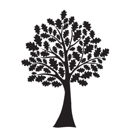 black oak tree Vector