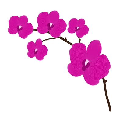 Branch orchid flower vector background for design