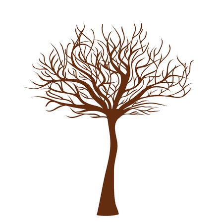 huge tree: stylized tree Illustration