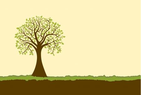 deciduous tree: �rbol Vectores