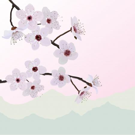 Almendras flores