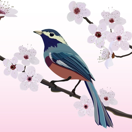Card design, bird and flower Vector