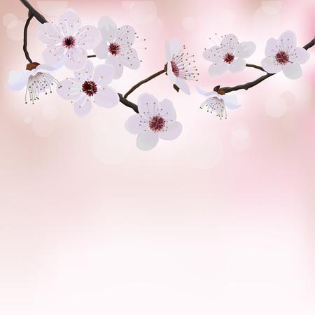 Bloem boom achtergrond Vector Illustratie