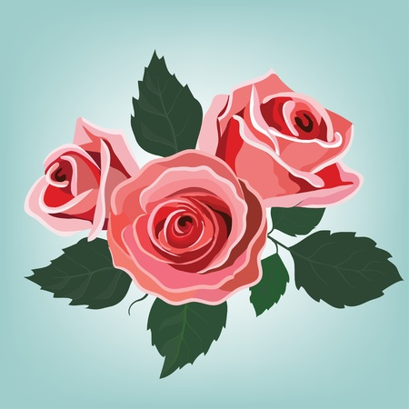 ornamental garden: Flowers roses and almonds isolated on blue Illustration