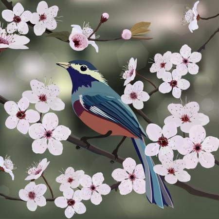 amande: Oiseau pos� sur la branche d'amandes � la fleur Illustration